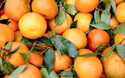 Benefits and Uses for Hi-Dose Vitamin C Treatment